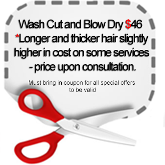 Wash Cut and Blow Dry special $46  *Longer and thicker hair slightly higher in cost on some services - price upon consultation